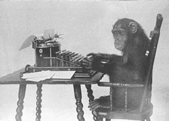Monkey-typing_web